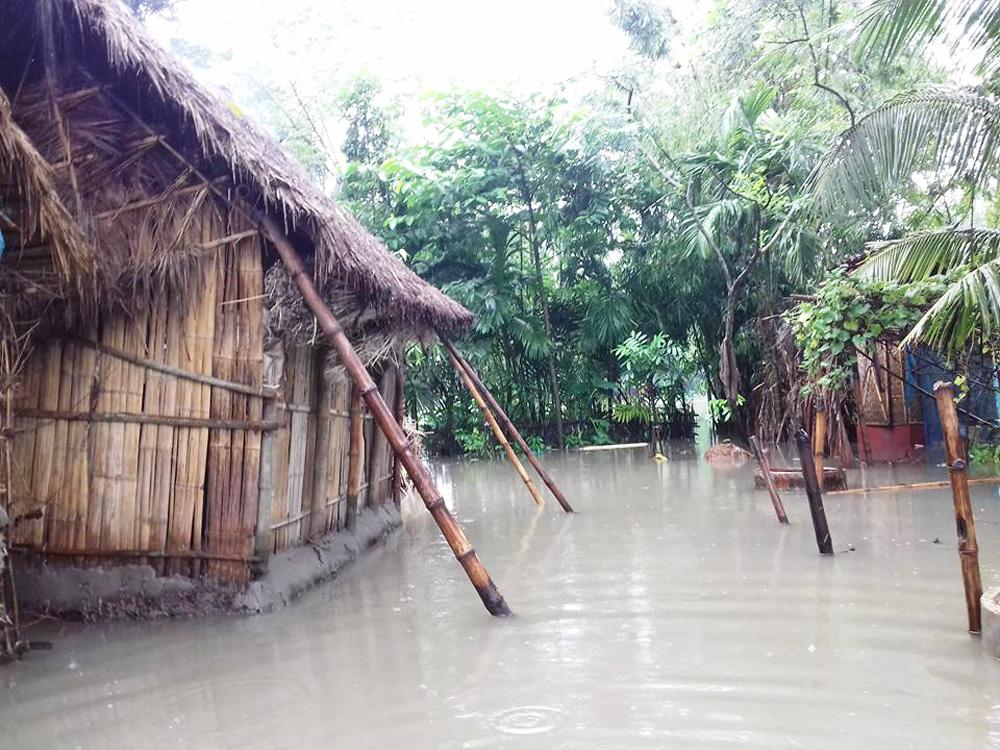 Sundarban village