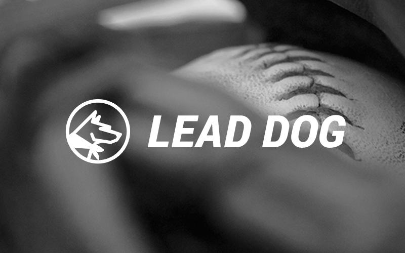 project_ux_leaddog_01.jpg