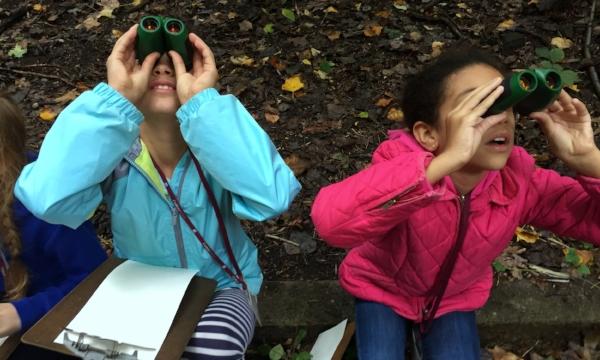 binocularsv2.jpg