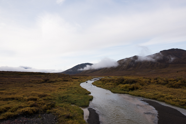 Blackwater River, Tombstone Territorial Park, Dempster Highway, YT