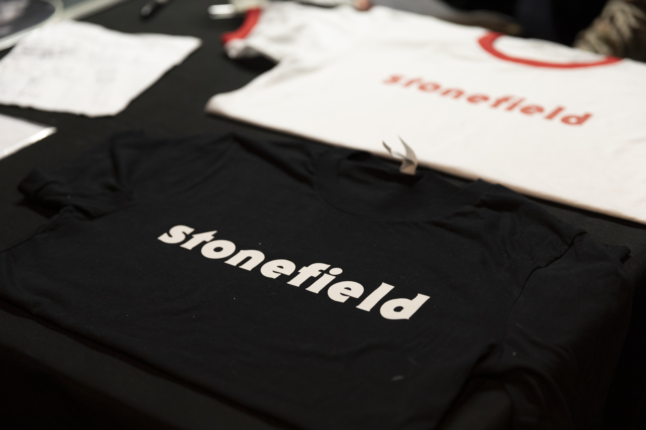 Stonefield_24.jpg