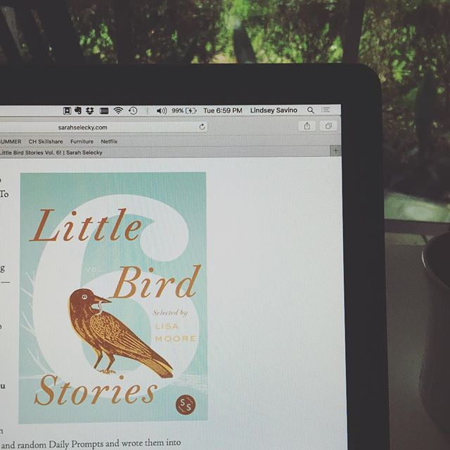 Taking a break from not posting/posting cat pics to say that my first published story just came out! Check it out if you are so inclined! Link in bio. (Spoiler alert: it has nothing to do with birds.)