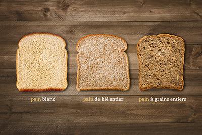 breadtypes_FR.JPG