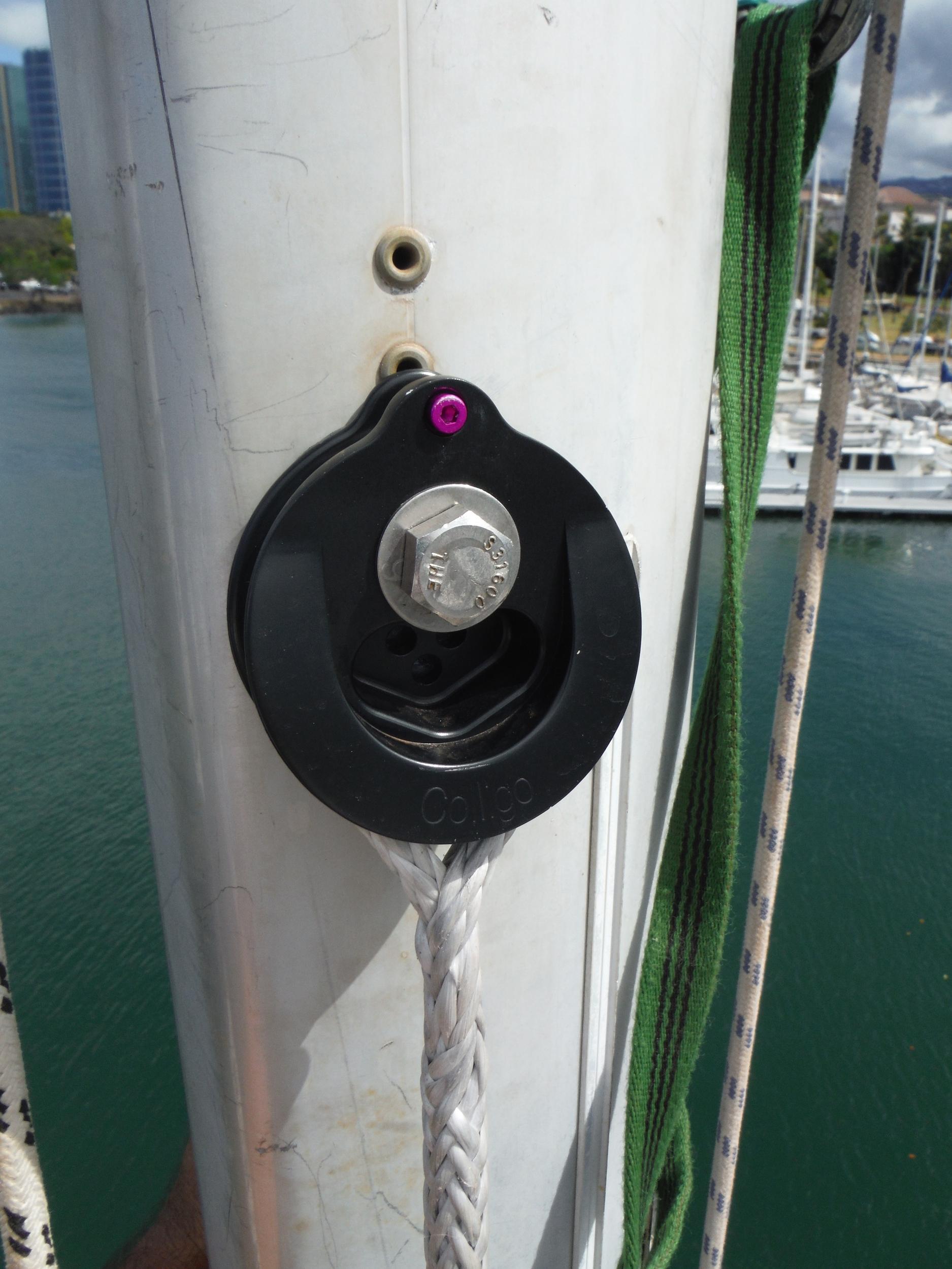 cheeky tang on mast.JPG