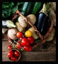 HPFS - vegetables picture for website.jpg