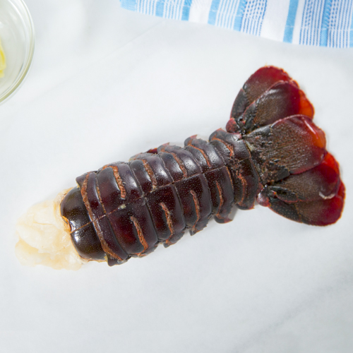 P&Y_featured_sea_lobster_tail.jpg