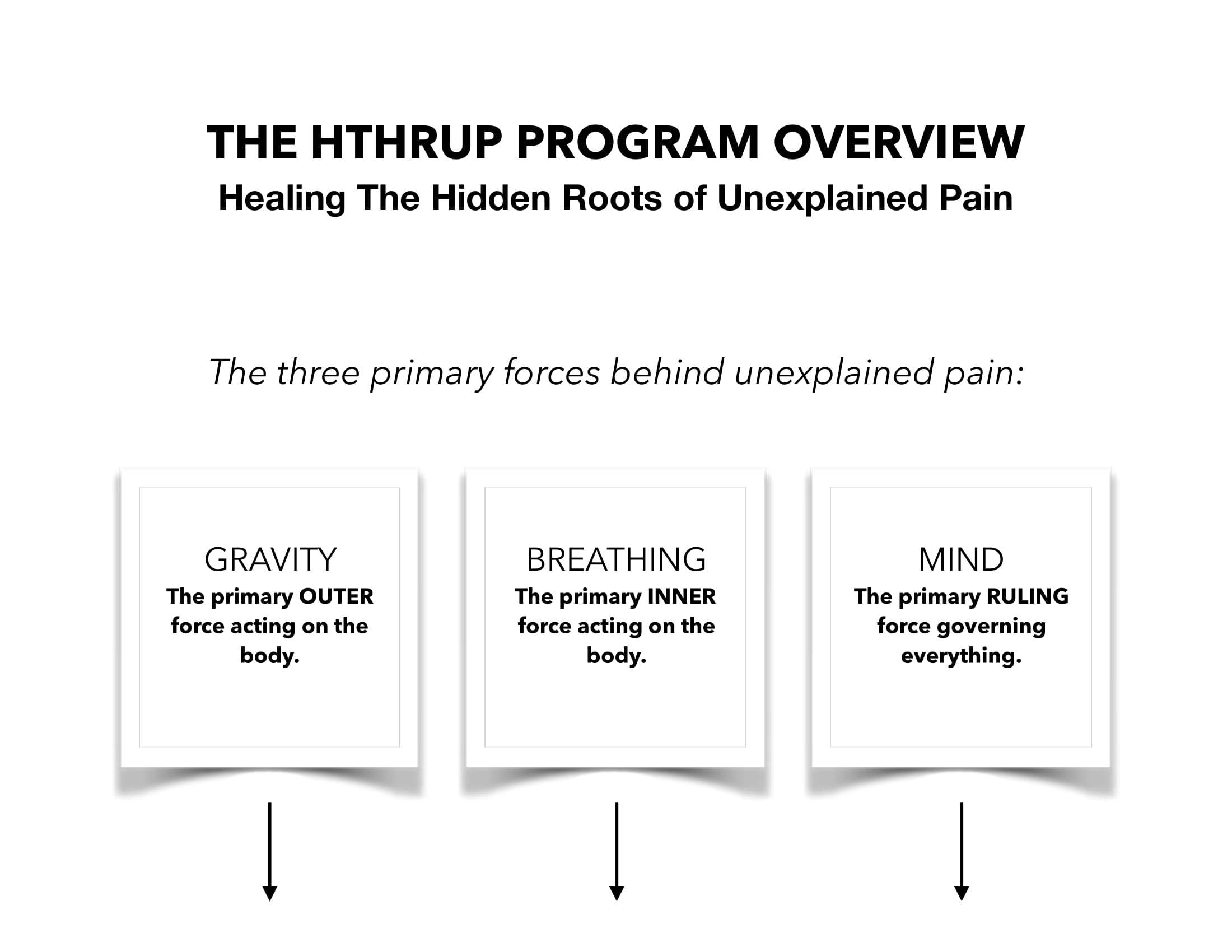 THE HTHRUP PROGRAM GRAPHIC OVERVIEW WITH TITLE-1.jpg