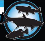 2017_KW_Logo_72.png