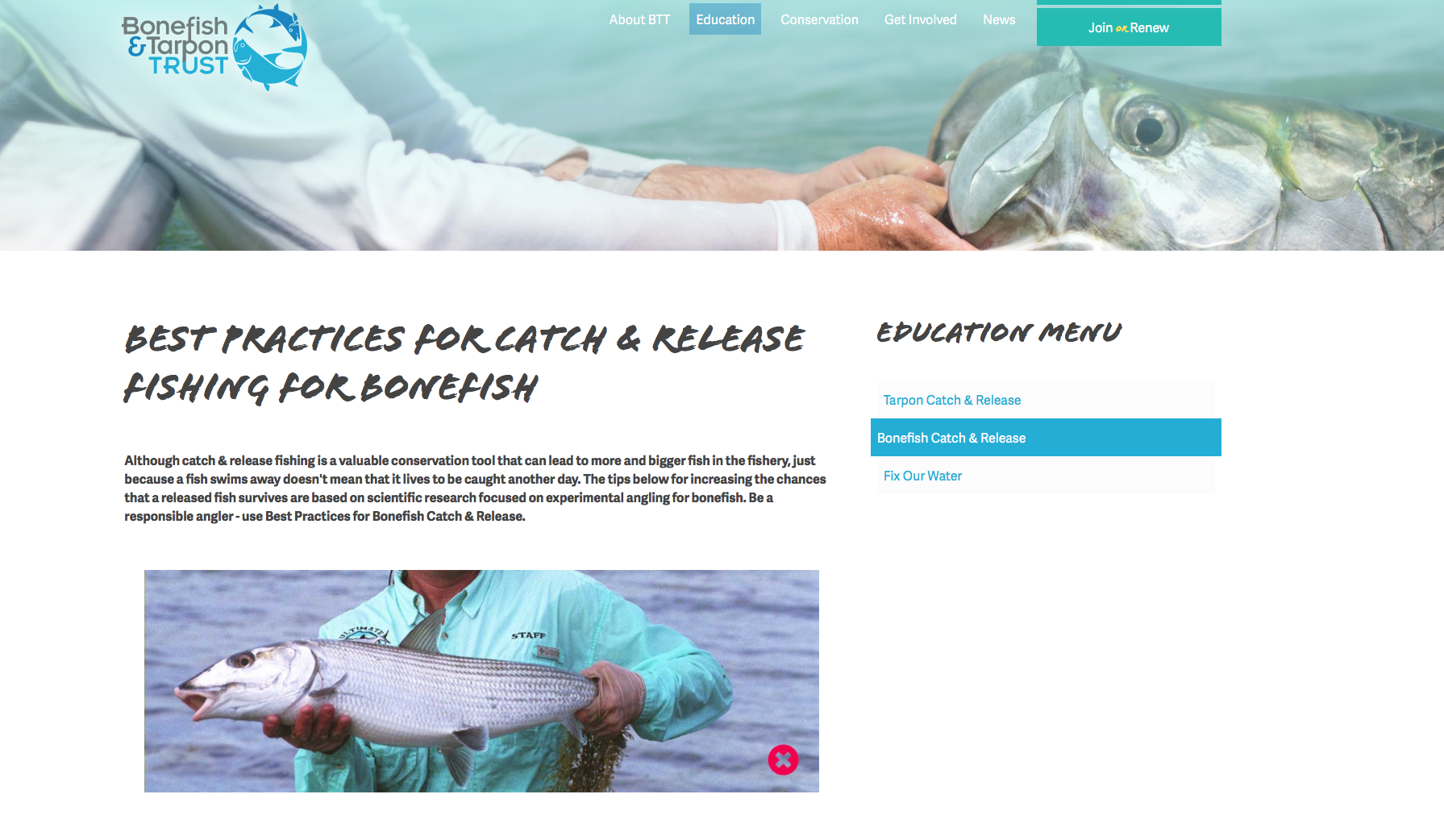 Image of BTT's Best Practices for catch & release fishing for bonefish from thier website bonefishandtarpontrust.org