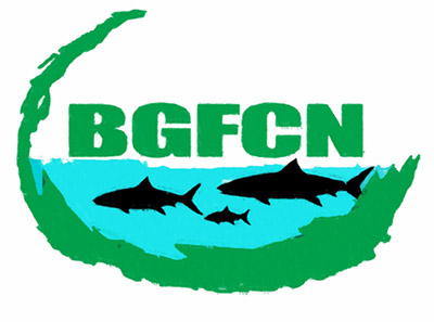 BGFCNlr.jpg