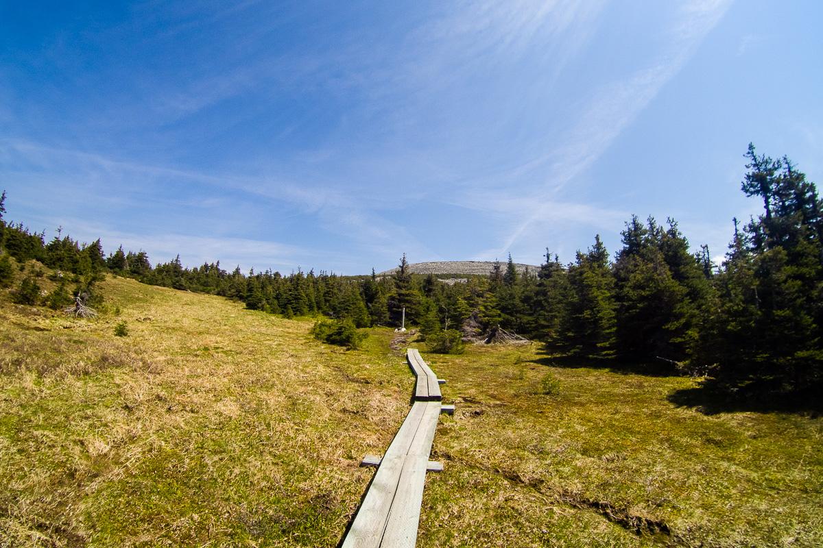 Wooden sidewalks on the backside of Mount Xalibu