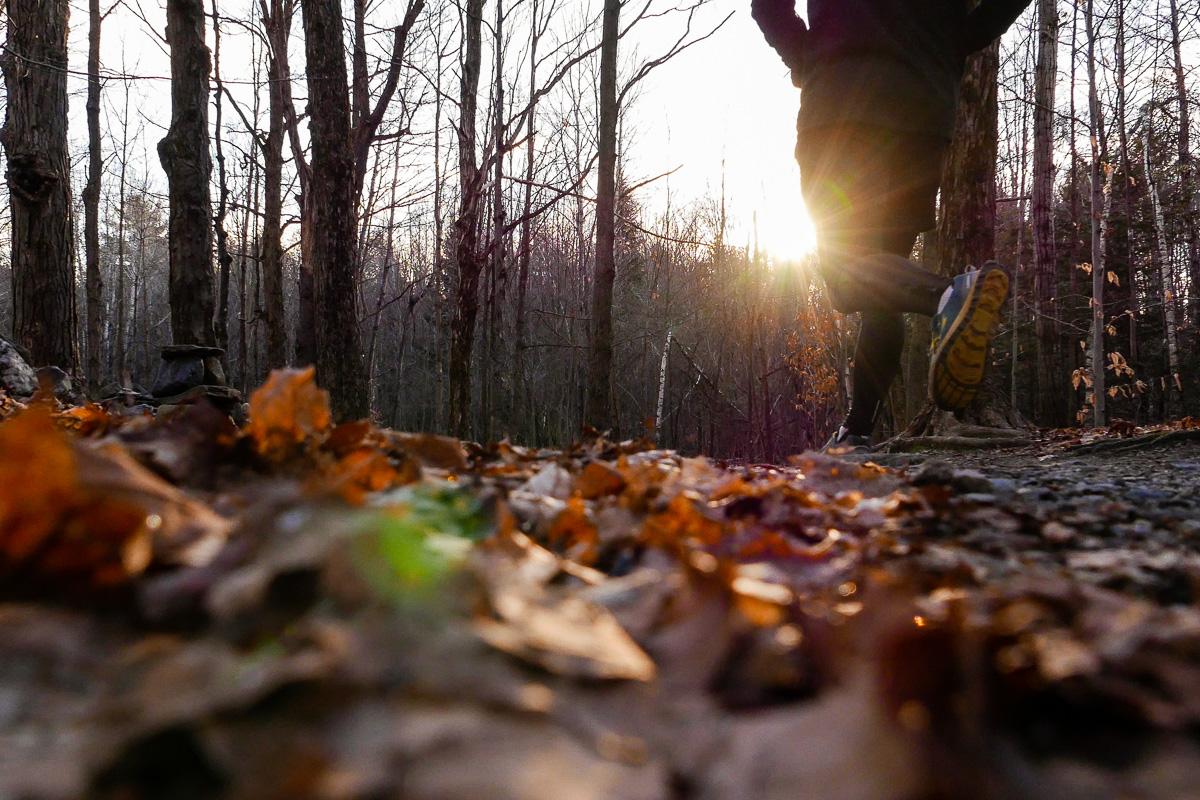 L'automne est ma période préférée de l'année pour courir.