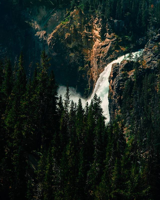 Lower Falls, Yellowstone National Park #yellowstonenationalpark #Yellowstone #nps #waterfall #river #landscape #sunlight #mountains #wyoming