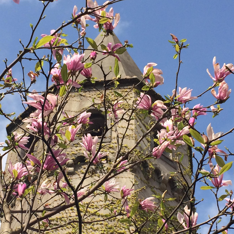 Villa Cimbrone tower.jpg