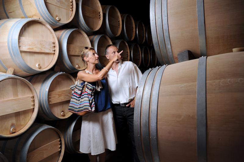 Vineyard-Visit.jpg