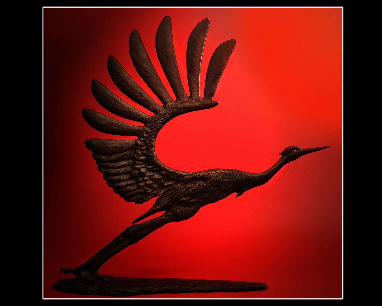 Todd Rothstein Photo Red Heron 16x20.jpg