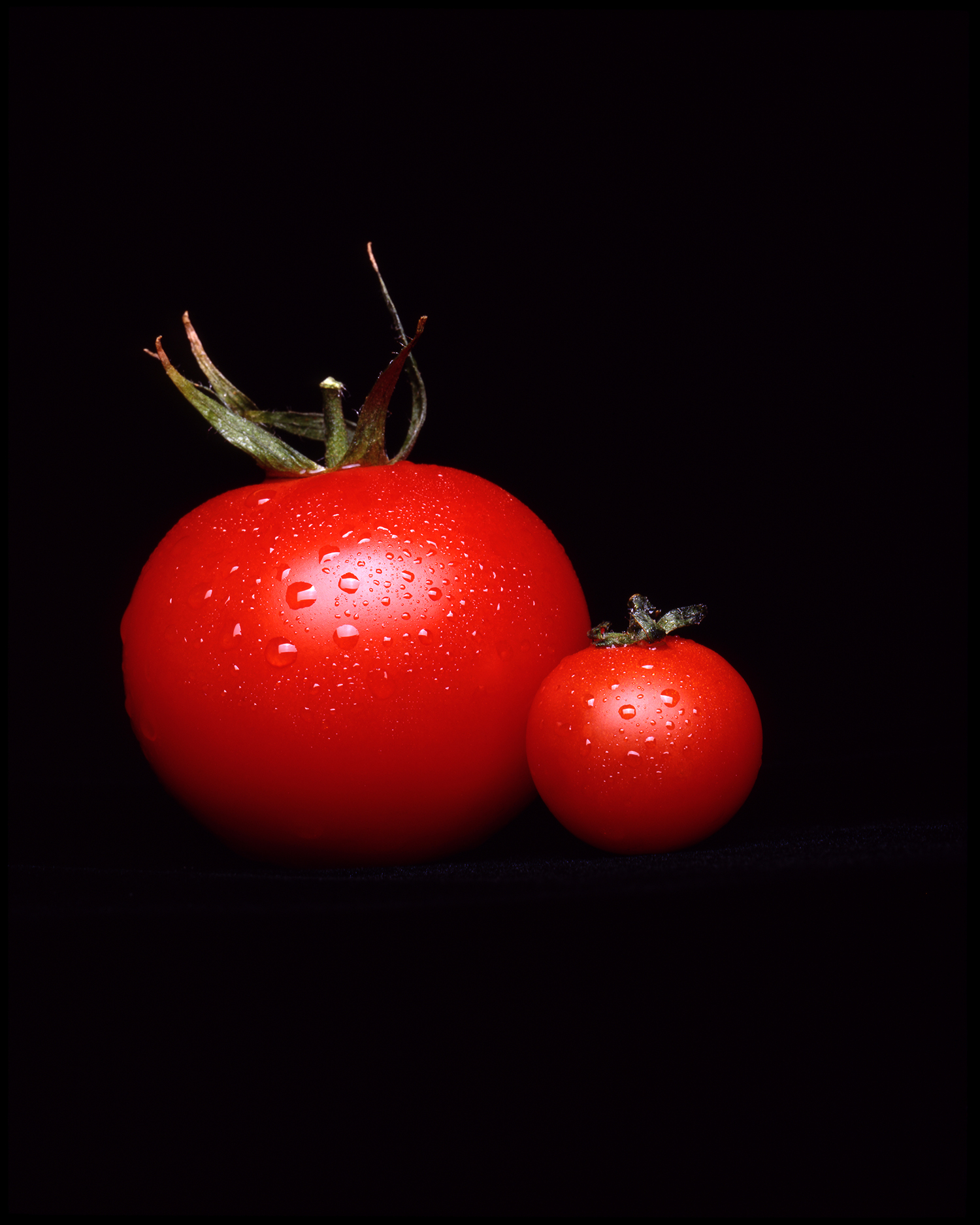 Todd Rothstein Photography Tomatoes.jpg