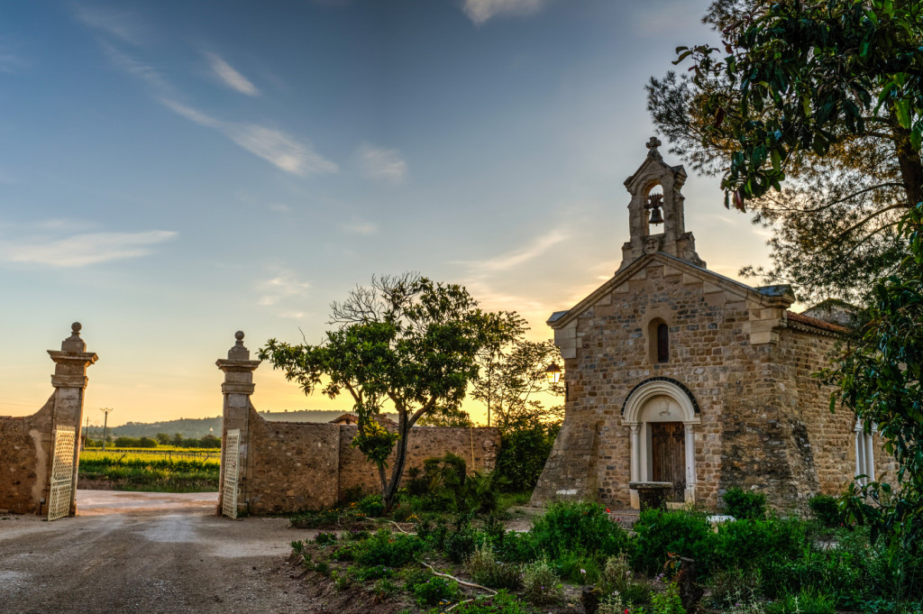 Bacchanal in Languedoc - Wine Immersion and Education