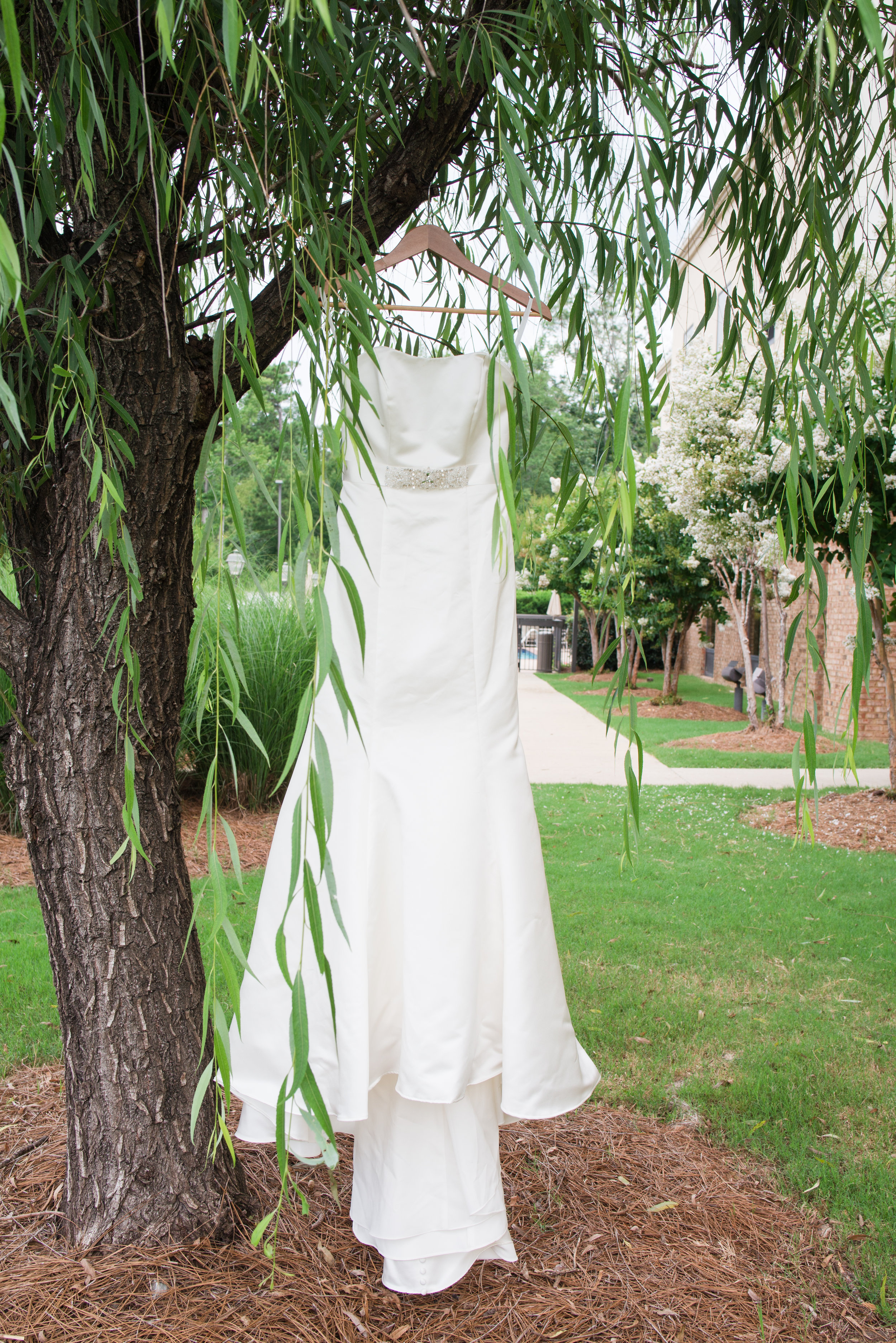 Taylor Wedding-4.jpg