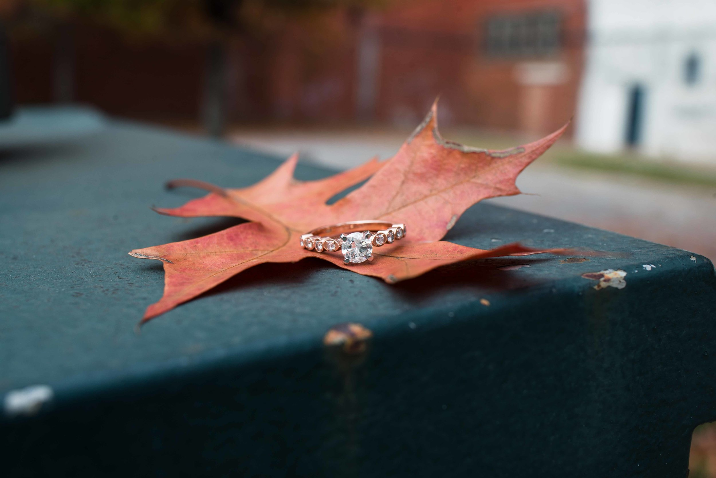 Lauren and Justin Mobile Alabama Fall Engagement Lou's Jewelry