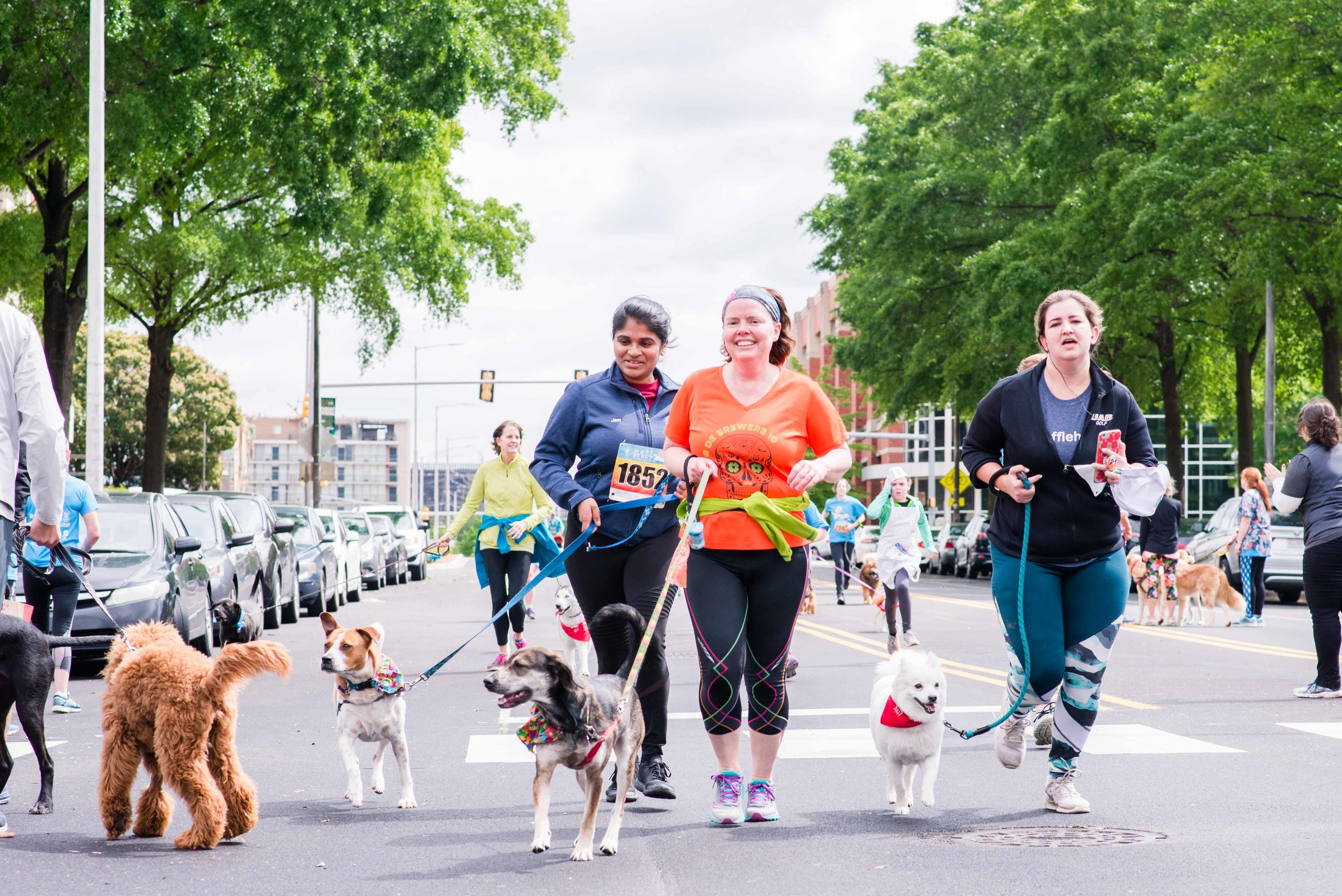 Deborah Michelle Photographer Birmingham Alabama Mutt Strut 2019 Dogs of Birmingham
