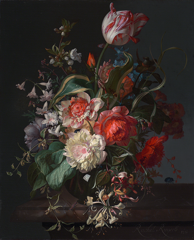'Flowers in a Glass Vase with a Tulip' 1716 by Rachel Ruysch. She's one of a handful of women represented in the entire National Gallery collection. This painting, hanging in a small room of Dutch still life paintings, arrested me. If you look closely (beyond that sumptuous honeysuckle, which is hard to do, I admit) you can see the window of her studio reflected in the vase. That little window of truth invited me in to snap a close-up of her painting three hundred years later. Reflect.