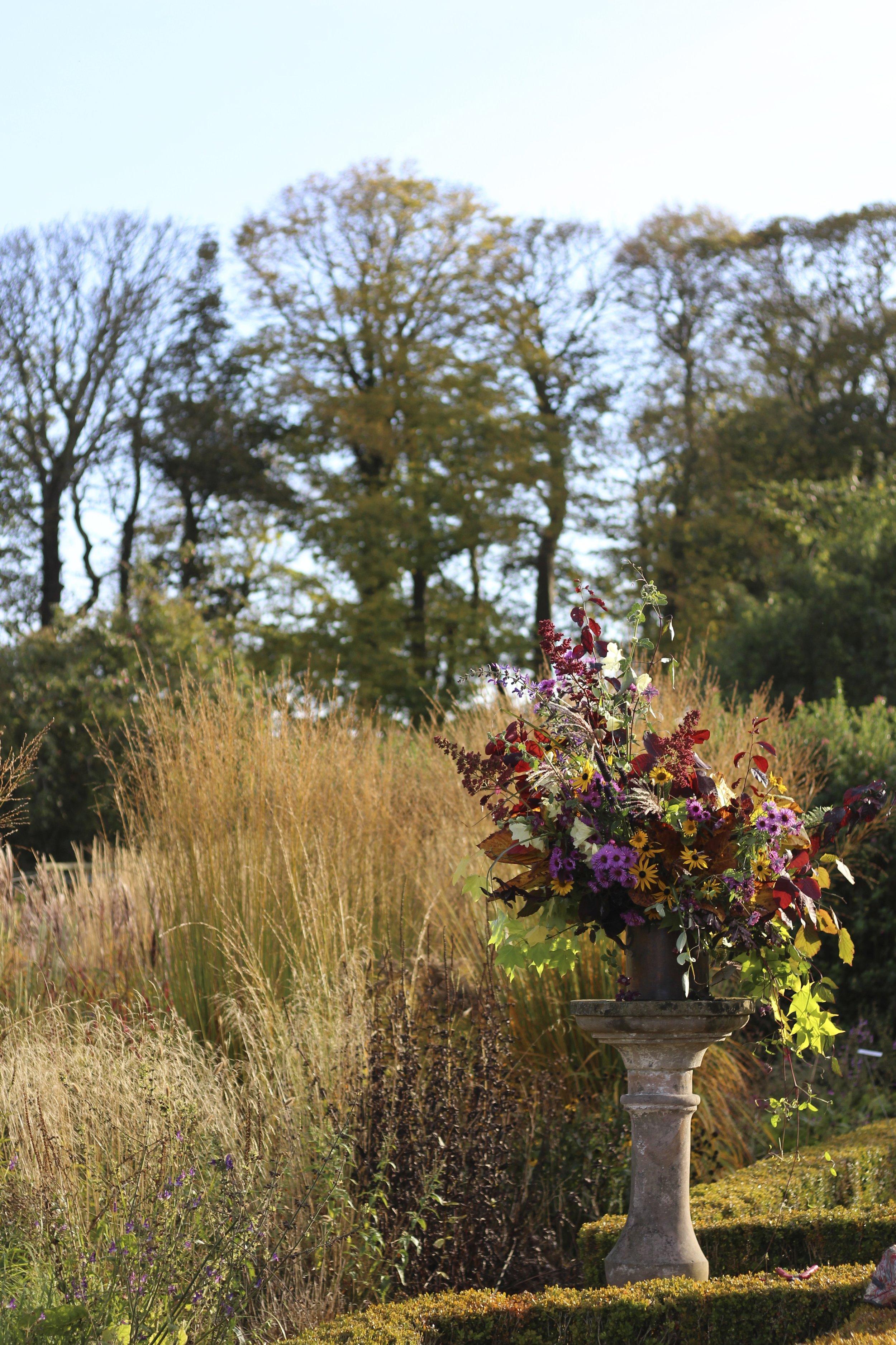 The walled garden's perennials assembled in a copper pot, late October, 2016.