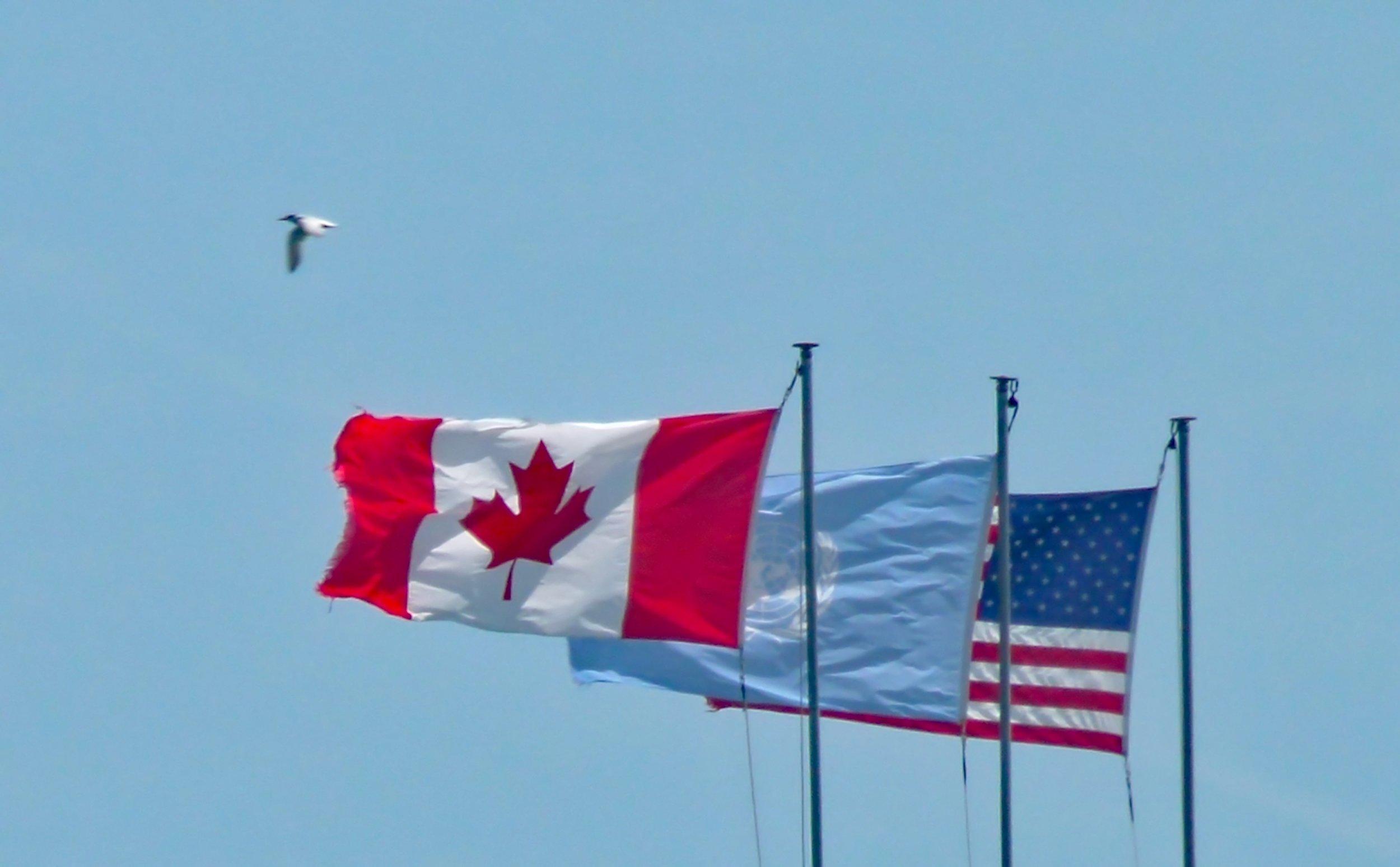 North American flags.jpg