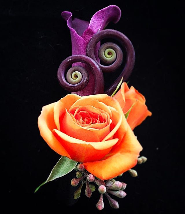 We love when brides want to brighten up their weddings with fun flowers! We especially love mixing secondary colors to form an unexpected combination. This boutonnière has a purple lily contrasted by orange roses with monkey tails and seeded eucalyptus accents. 😍 . . #bbfloraldesign #flowers #flowerstagram #wedding #boutonniere #purple #orange #roses #lilies #monkeytails