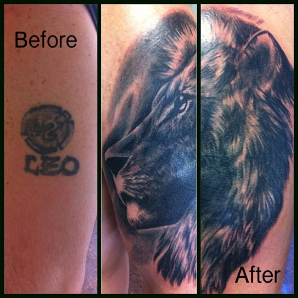 lion coverup.jpg