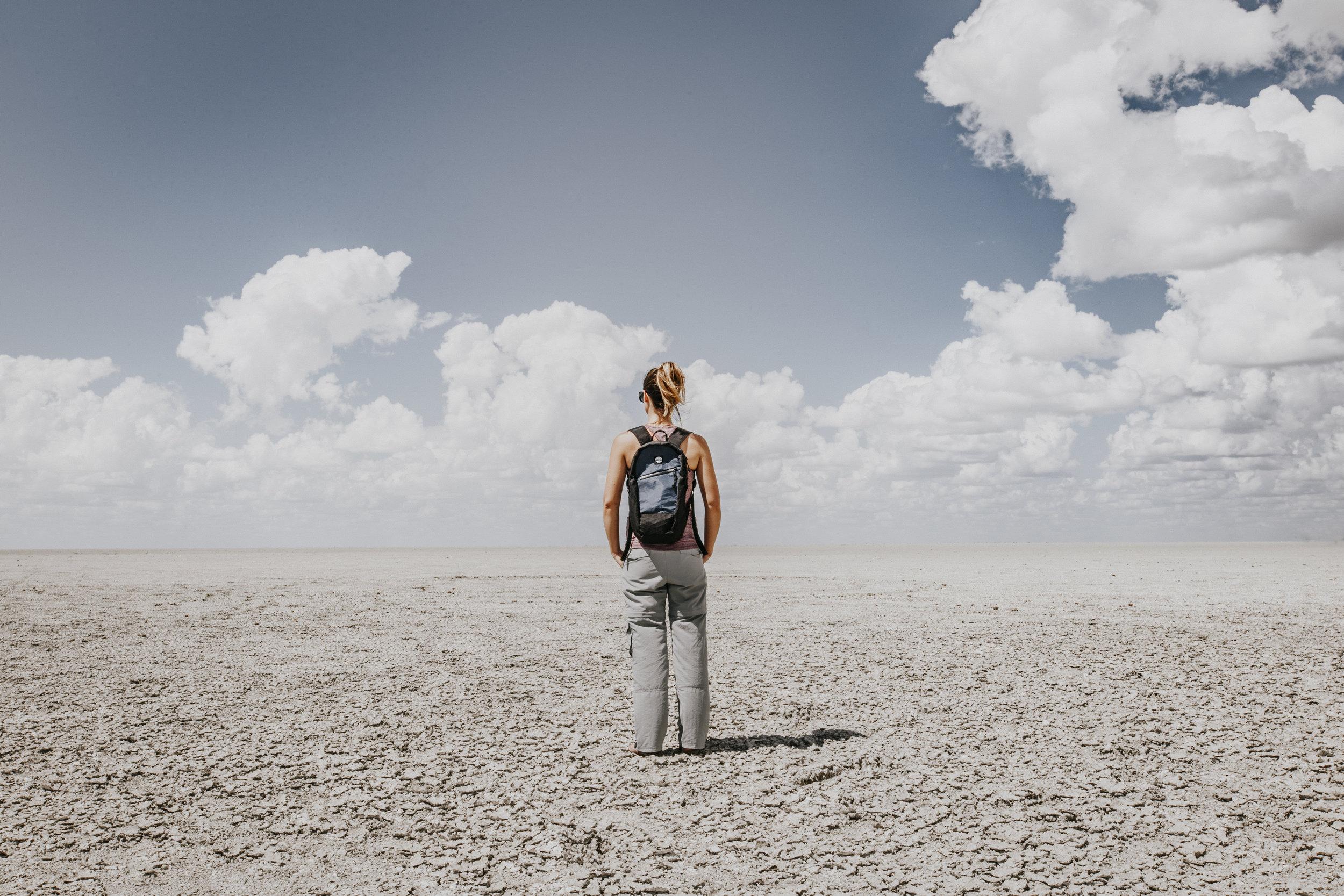 The desolation of the Etosha Pan, Etosha National Park