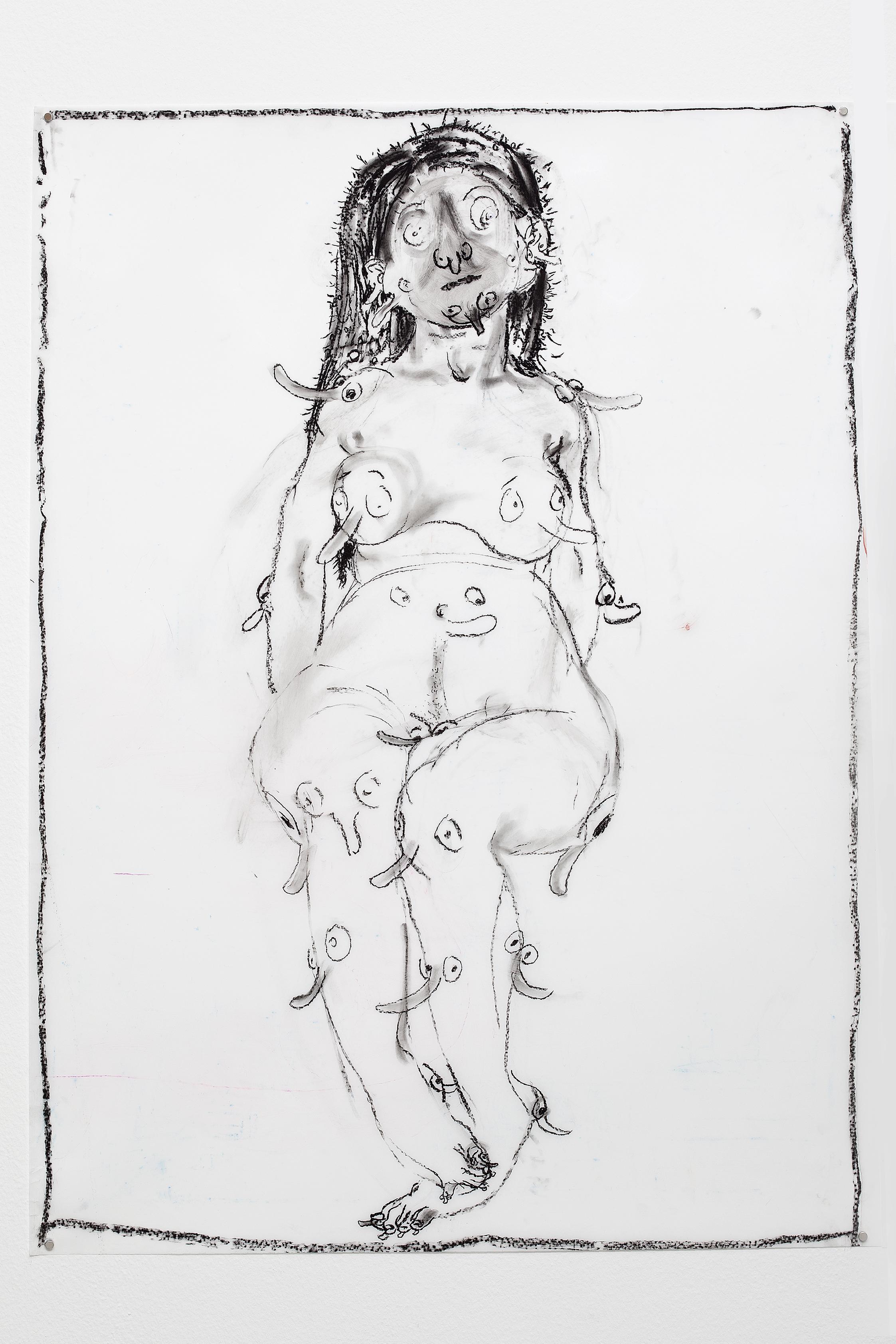 "2017, charcoal on Mylar, 42 x 30"""