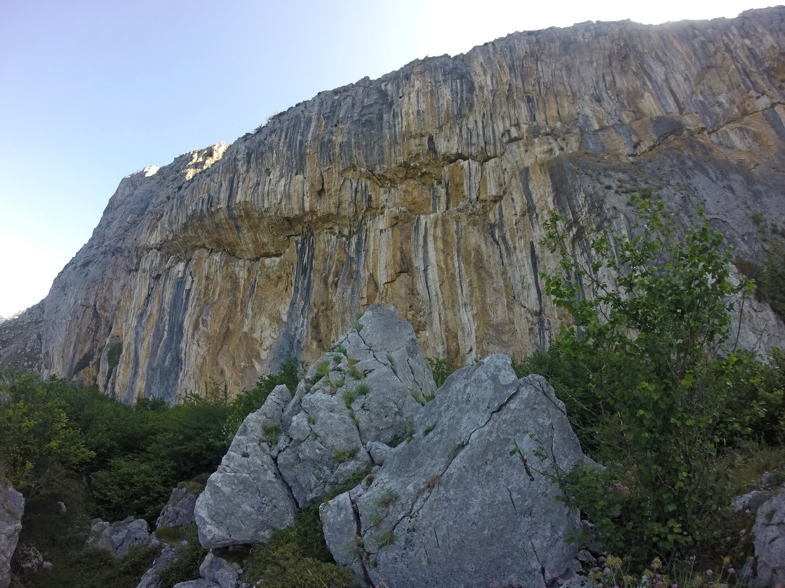 We climbed this, too.