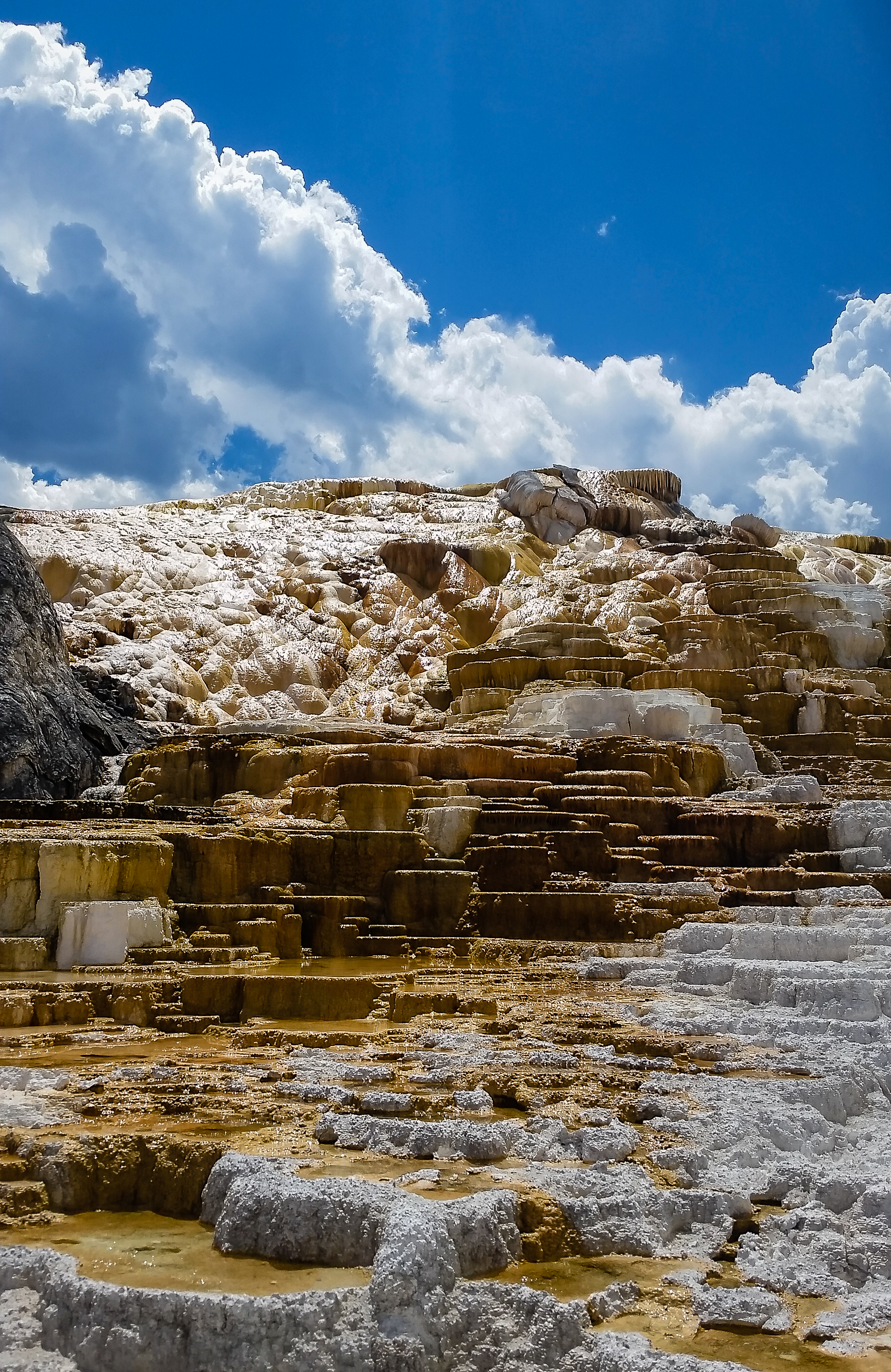 Minerva Terrace, a beautiful example of travertine terracing, within the Mammoth Hot Springs.