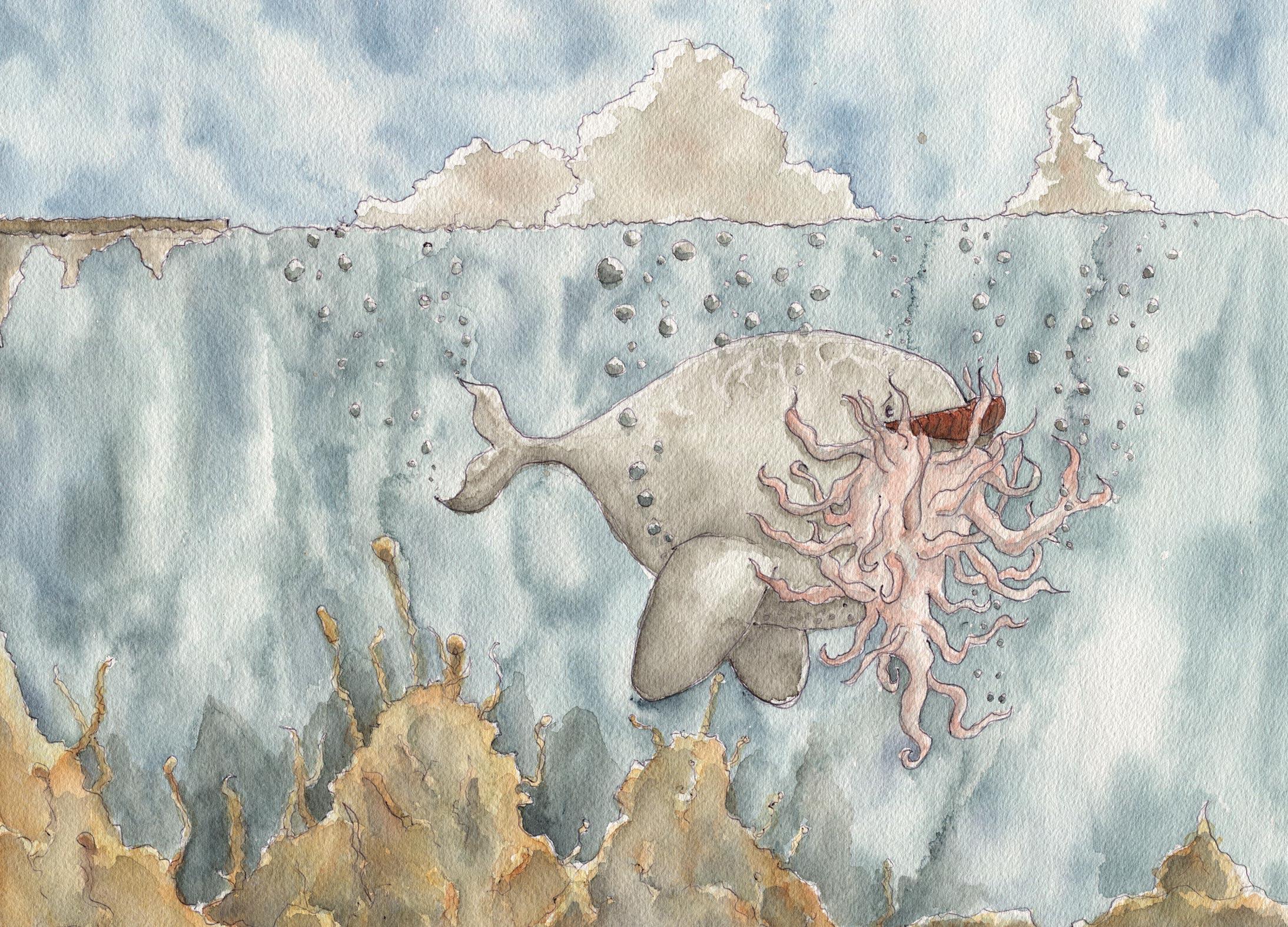 Land-Whale.jpg