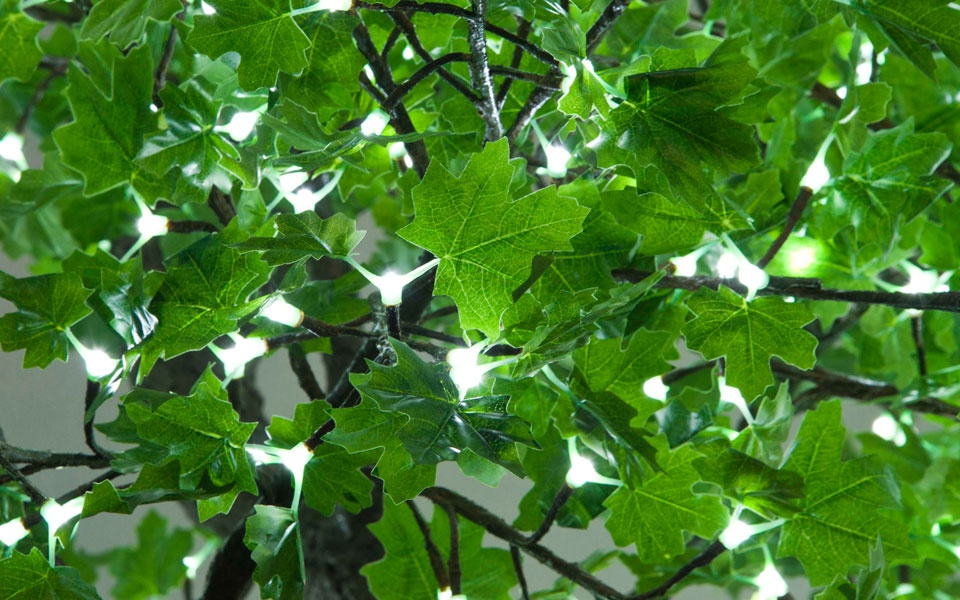 Maple, Green Leaf with Cool White LEDs