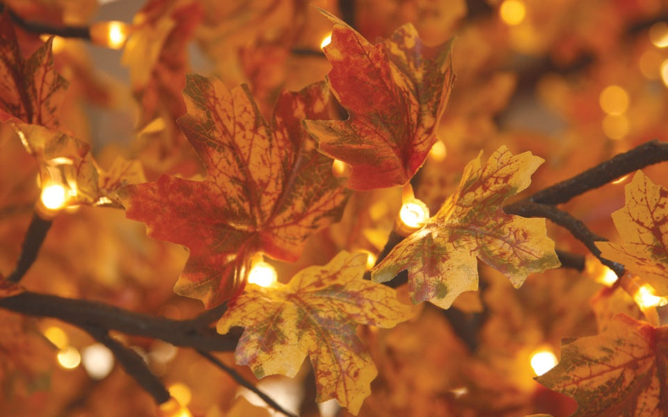 Maple, Red Autumn Leaf with Warm White LEDs