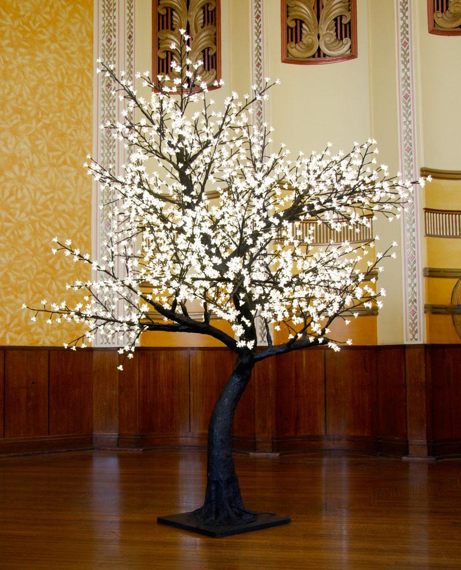03-Blossom-Warm-White.jpg