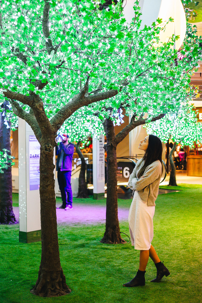 Westfield Sydney's Enchanted Garden Vivid Installation. Photo courtesy of Westfield Sydney. Image by James Ambrose.