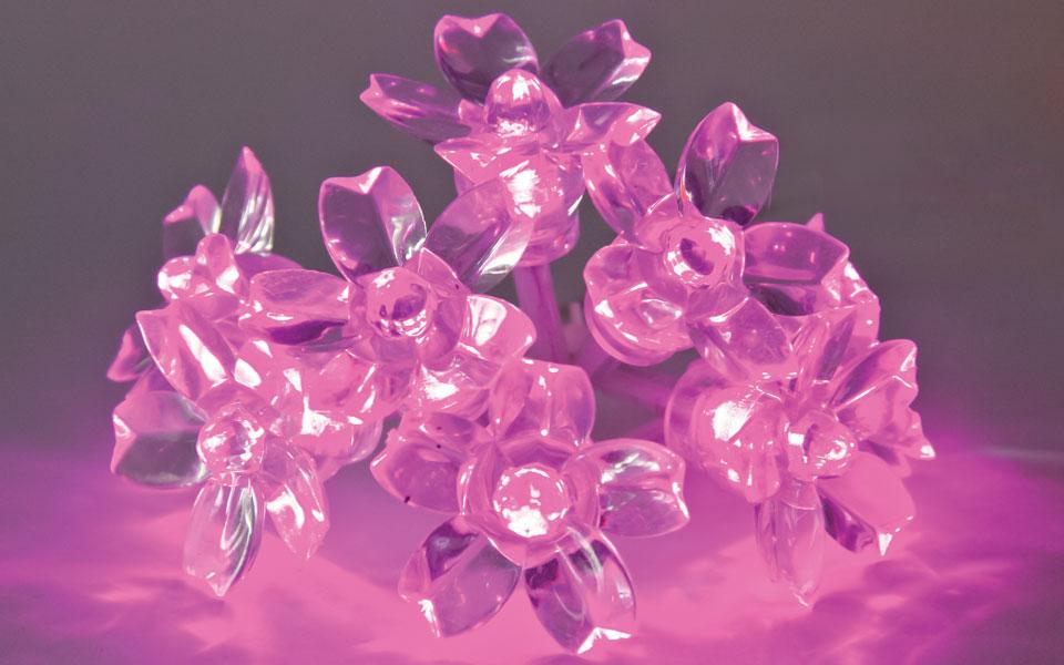 Blossom, Pink LEDs