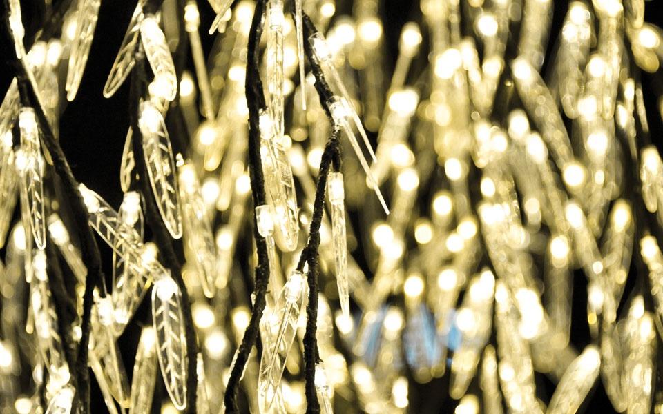 Willow, Warm White LEDs
