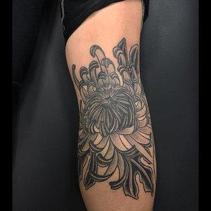 chrysanthemum-wengreen.jpg