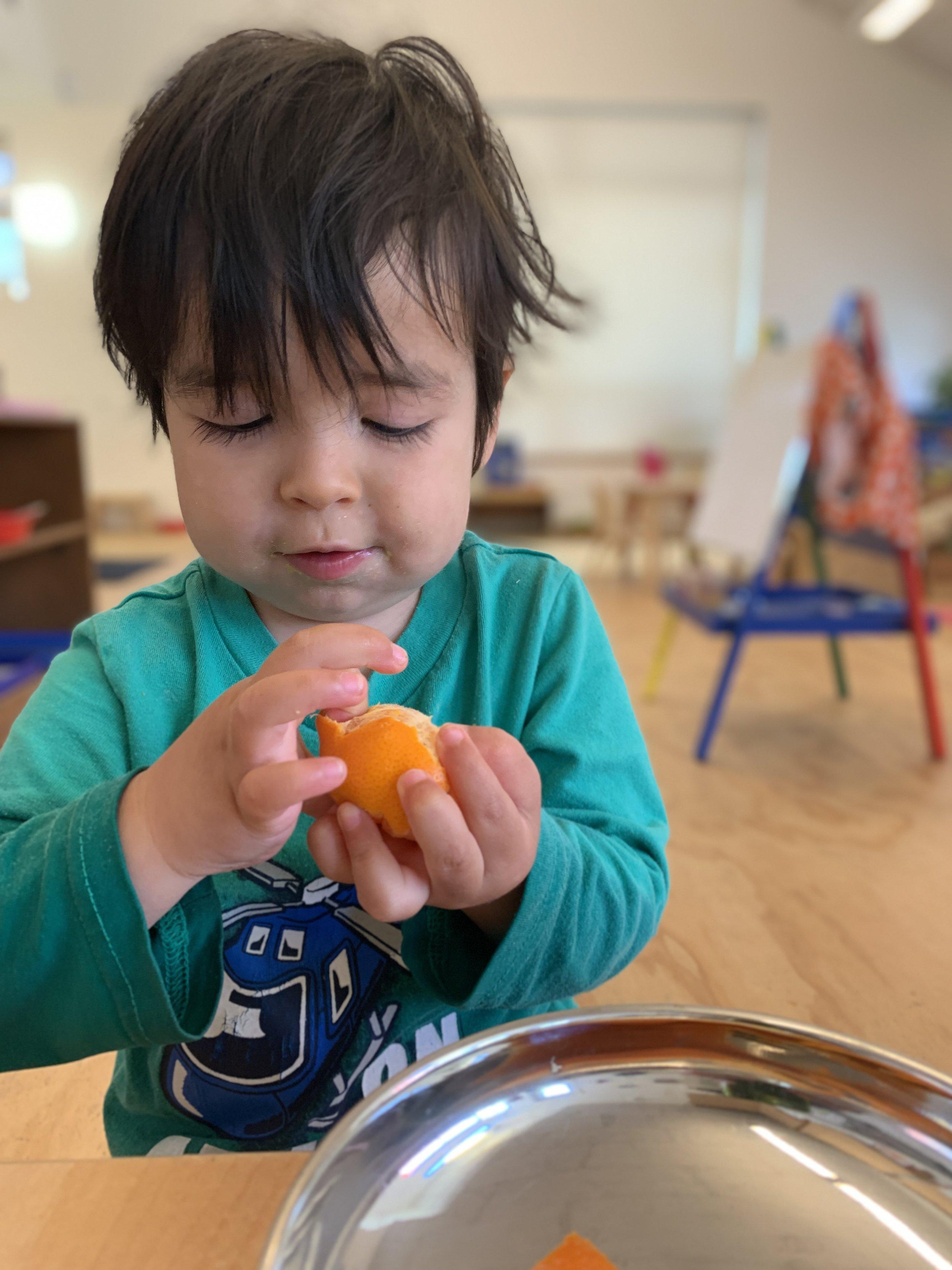 mateo clementine peeling.jpg
