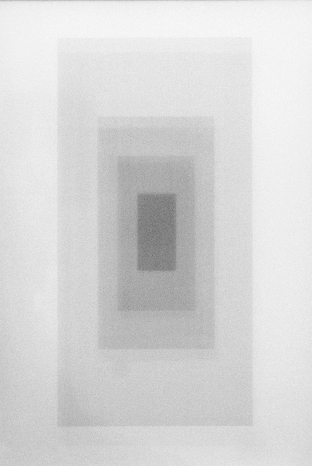 Sebastian Ingram /  Untitled   / 2016 / Laser print on acetate