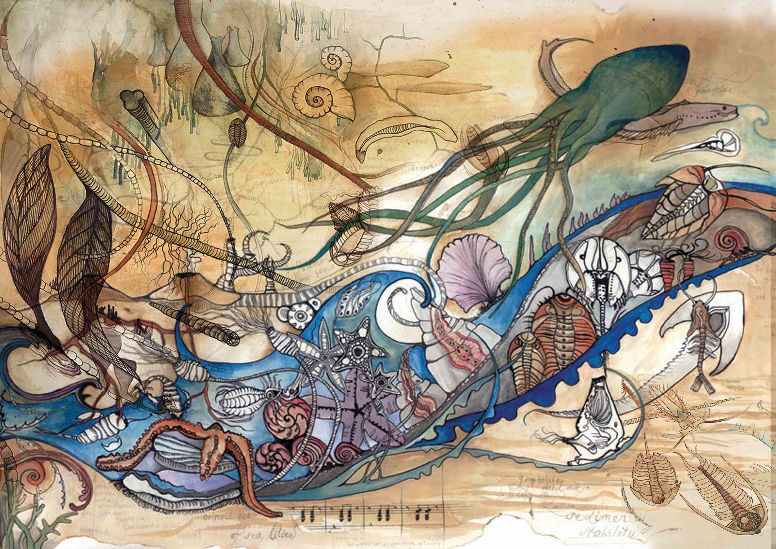 Copy of 8 Cambrian web.jpg