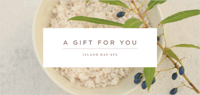 Island Day Spa Gift Certificate Design by Spa Wellness Consulting Australia.jpg