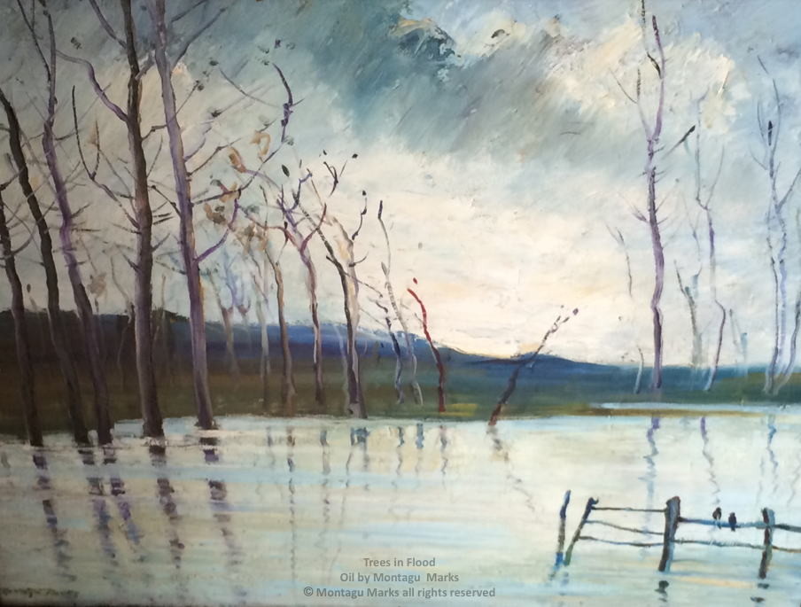 Trees in Flood. Oil by montagu marks copyright all rights reserved. Private Collection.