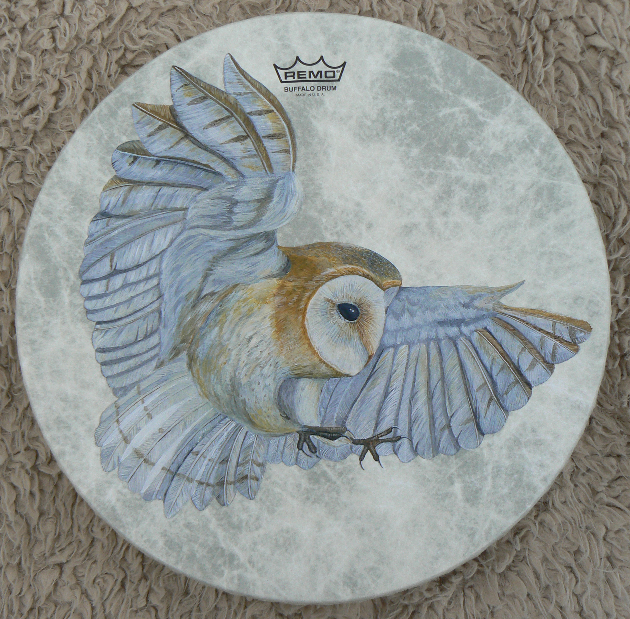 Barn Owl Shamanic Drum - 2017 © Sharyn Turner - Acrylic on Remo Fibreskyn