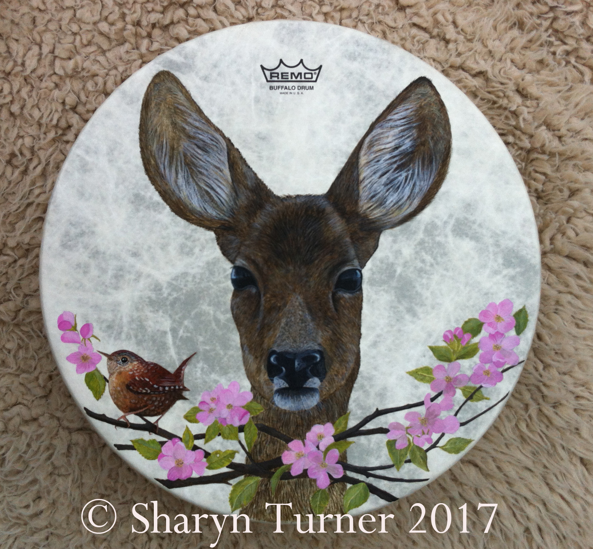 Wren & Doe Painted Drum - (Acrylic on Fibreskyn) © Sharyn Turner 2017