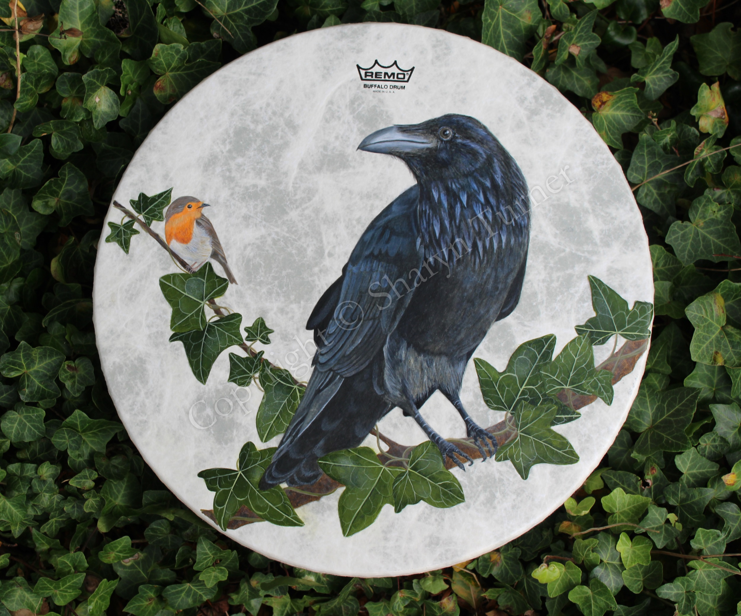 Raven & Robin Drum - Acrylic on Fibreskyn © Sharyn Turner 2017